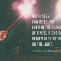 Happiness can be found even in the darkest of times if one only remembers to turn on the light - Albus Dumbledore