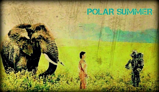 Polar Summer- Matilee