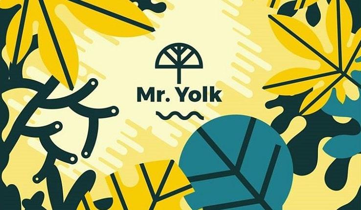 Mr. Yolk Star Light Head Light